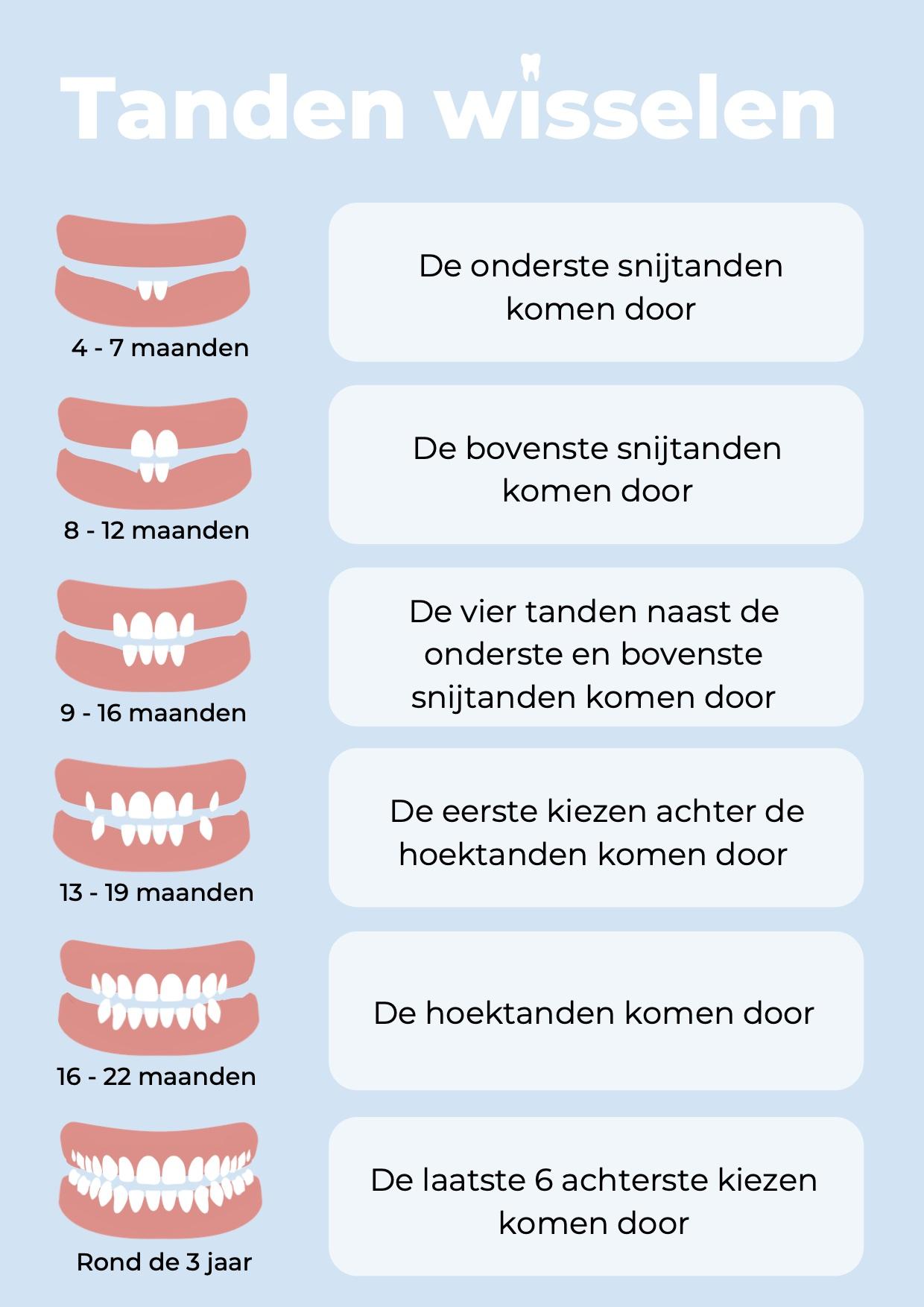 wanneer komen de eerste tanden?