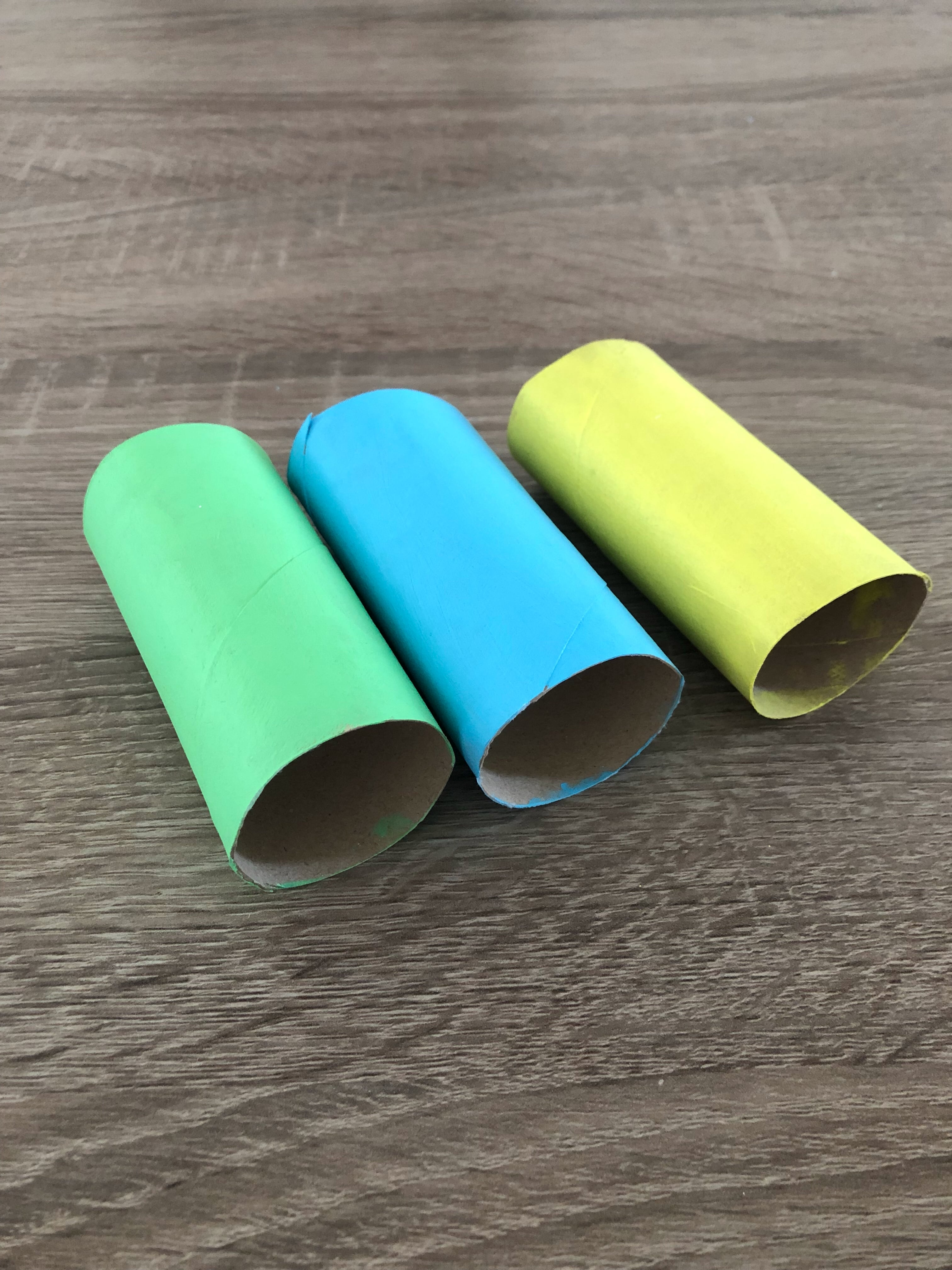 toilet paper craft painted tubes