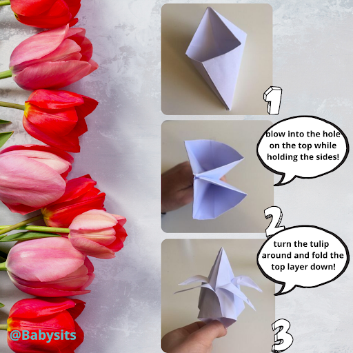 origami tulips step 6