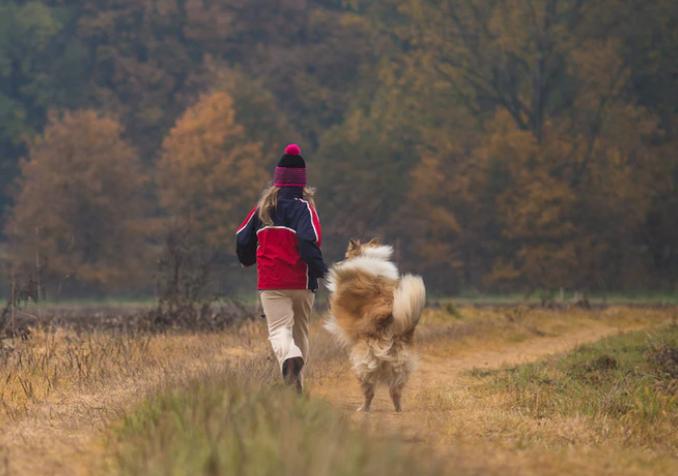 Dog and child hiking