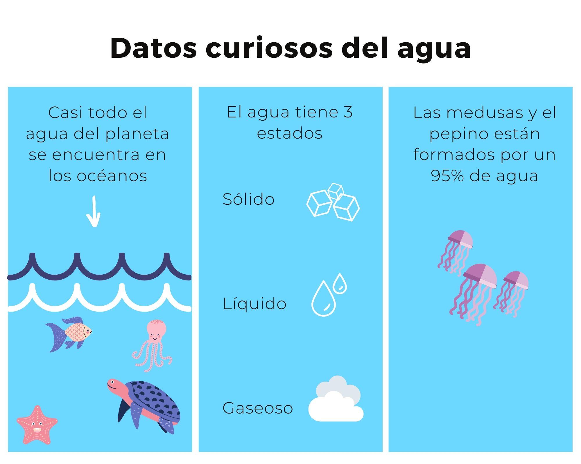 Datos curiosos sobre el agua