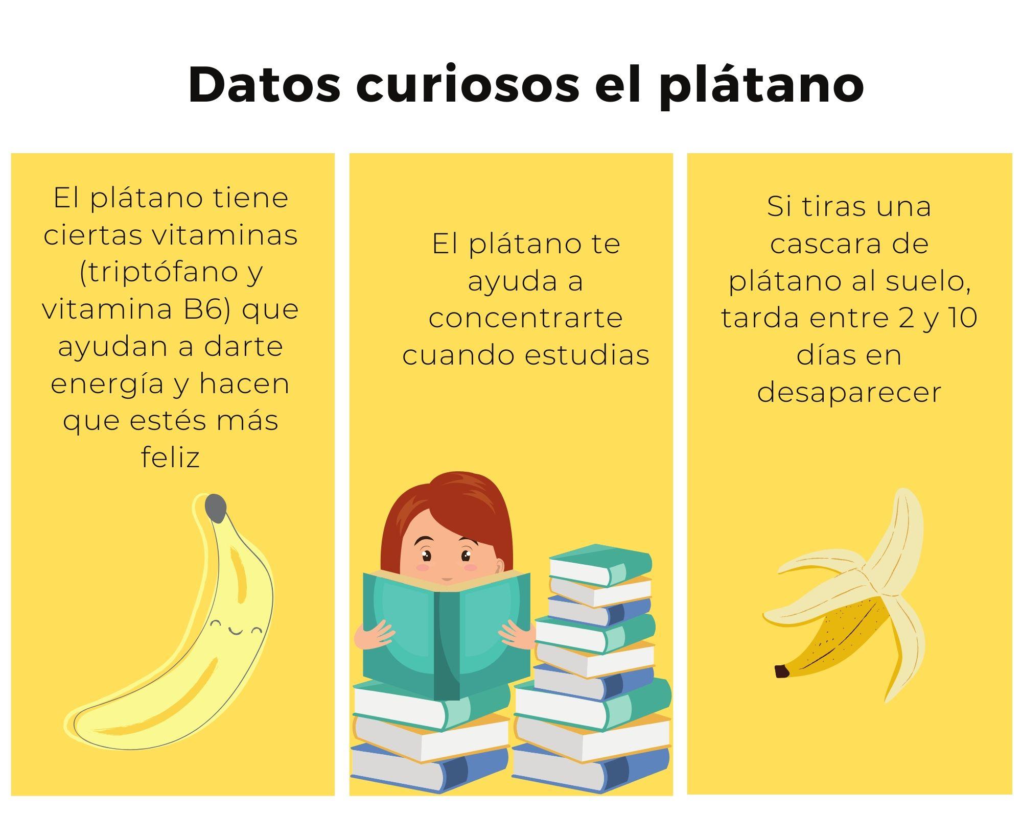Datos curiosos sobre el plátano