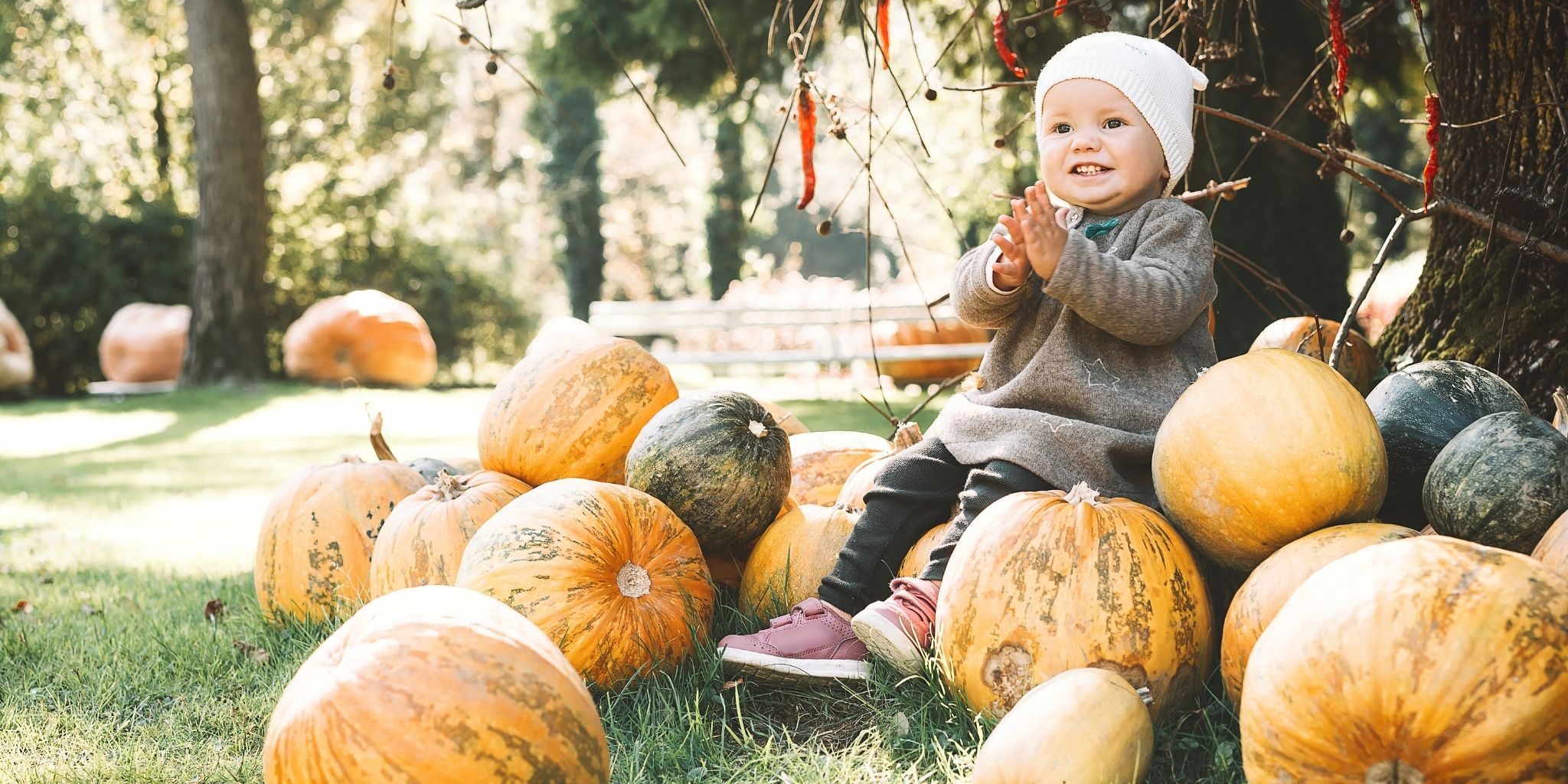Come spiegare l'autunno ai bambini: la frutta di stagione