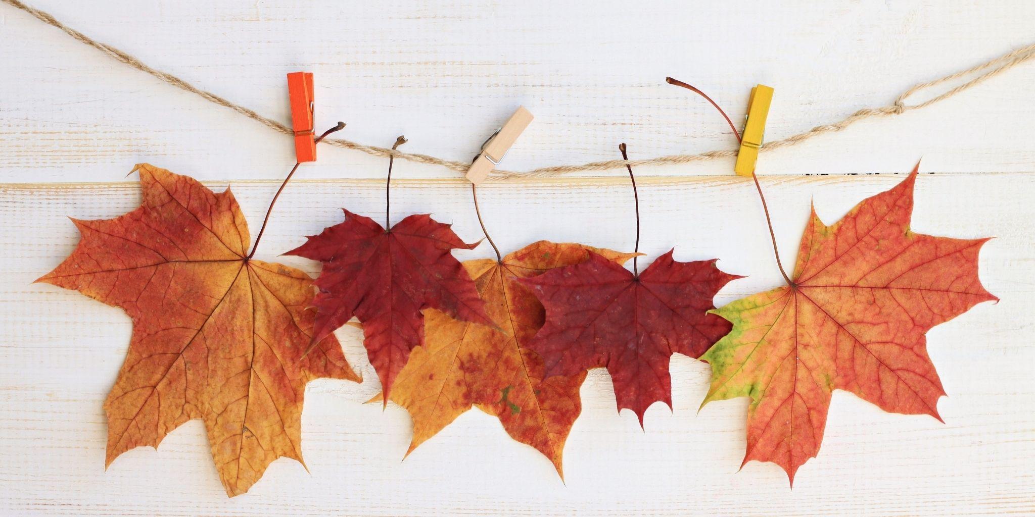 Come spiegare l'autunno ai bambini: crea una ghirlanda di foglie autunnali