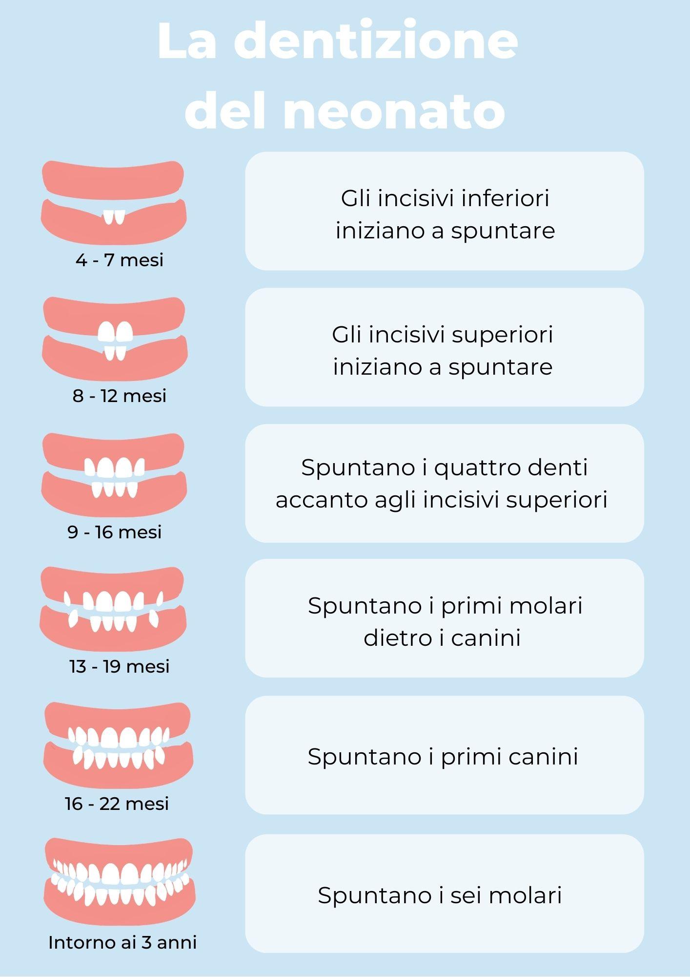 La dentizione del neonato: a che età spuntano i denti?