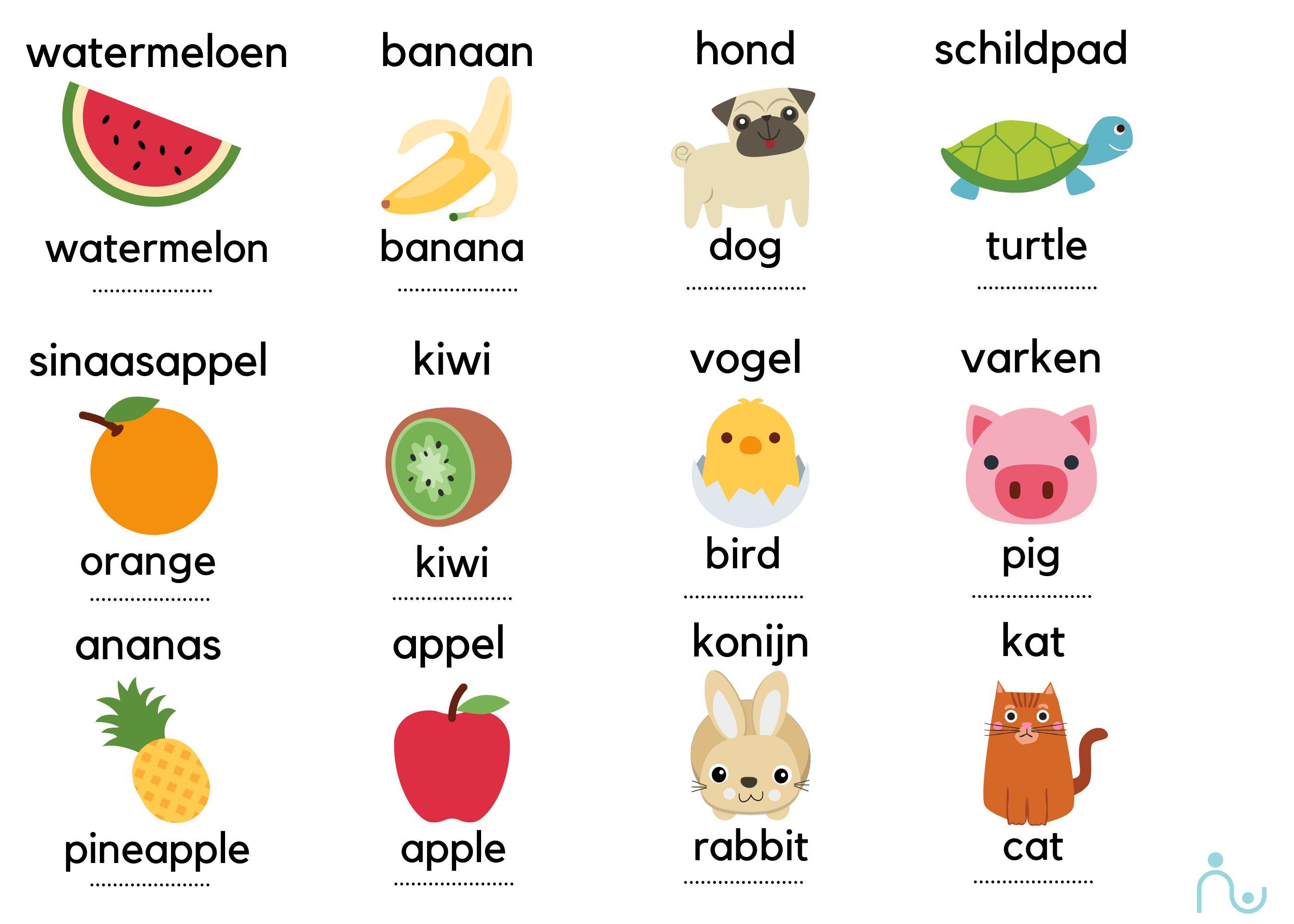 Engels leren met fruit en dieren
