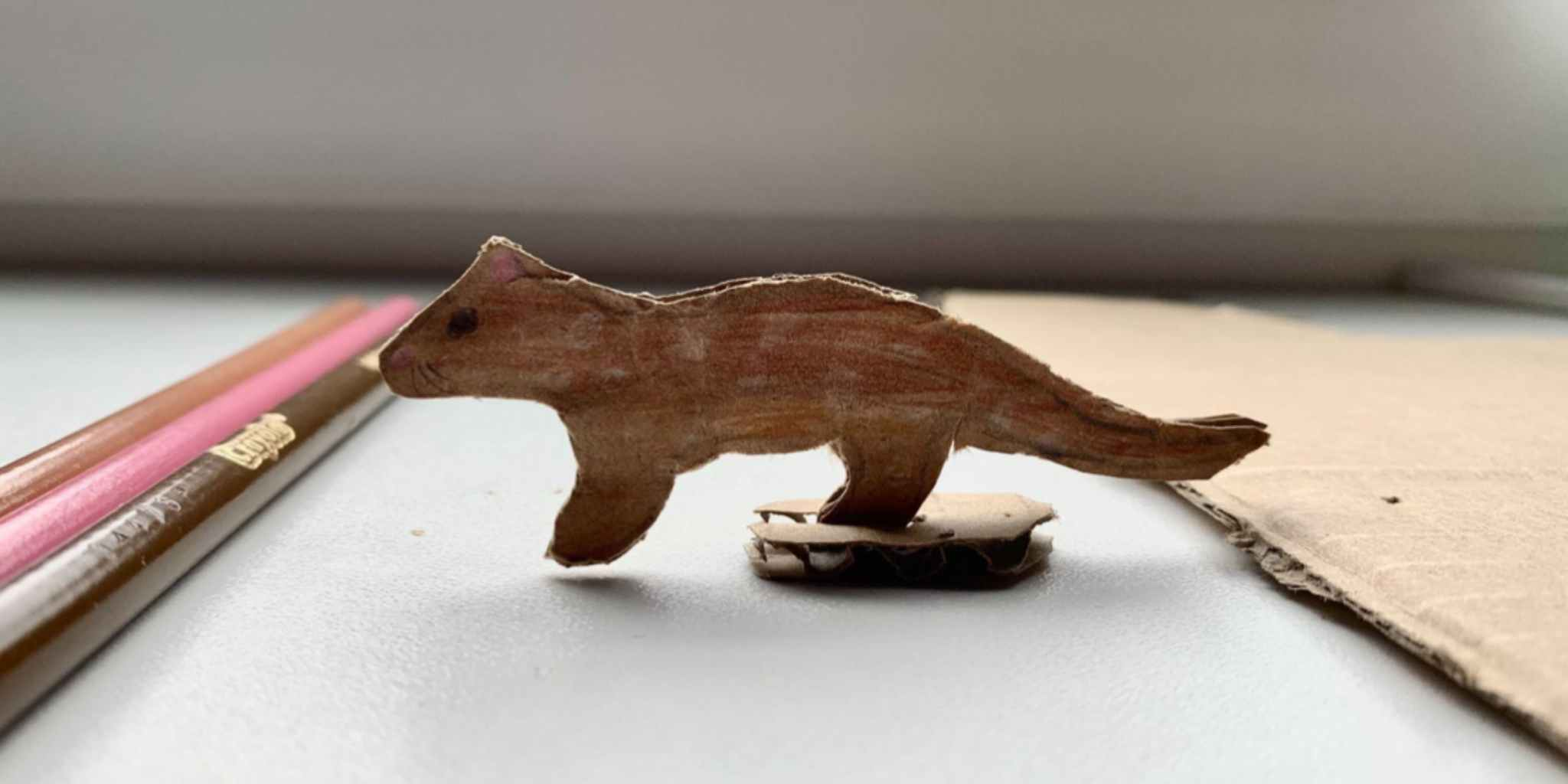 Create your very own quoll: cardboard figure and card!