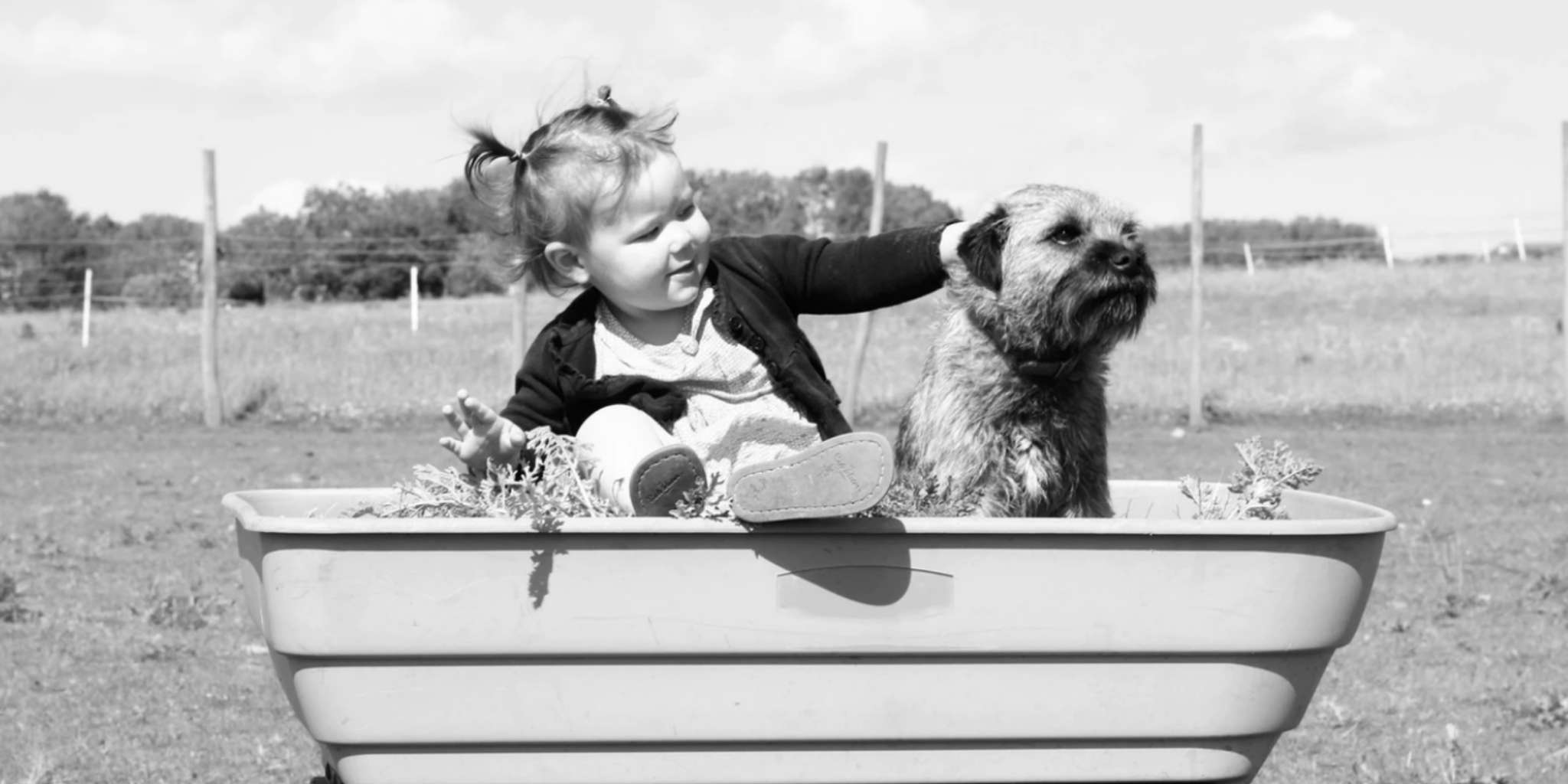 The Top 10 Spring Activities to Do With Your Dog and Your Kid