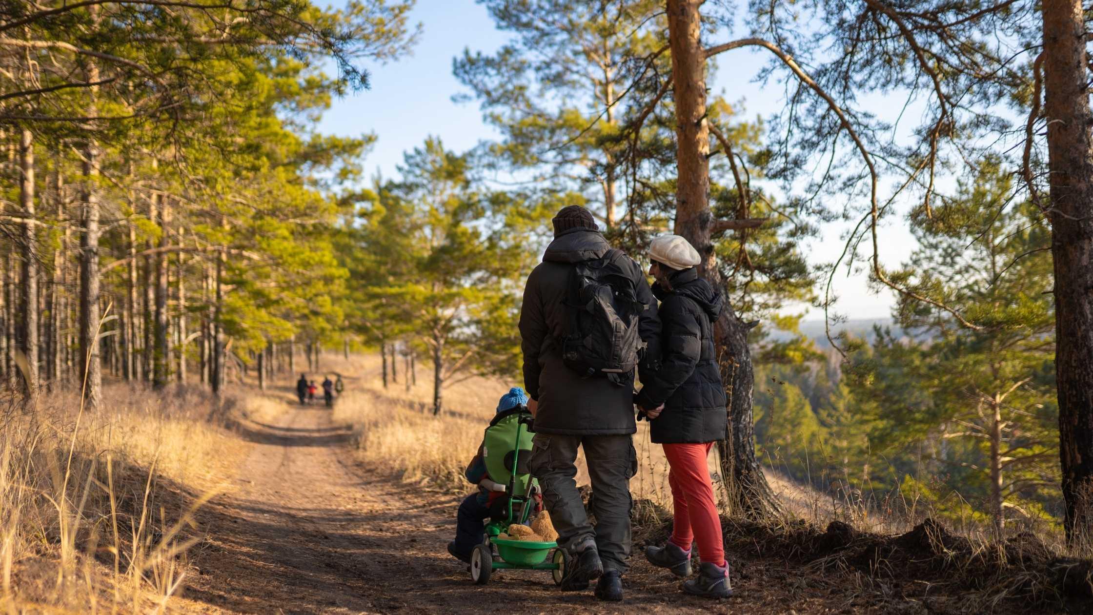 Plan en familia: Parques faunísticos