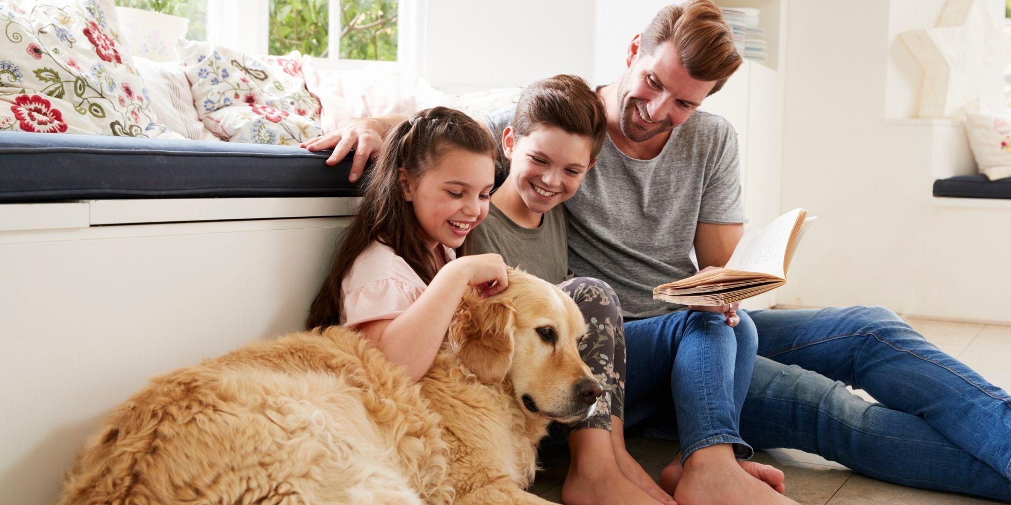Encuentra la mejor mascota para tu familia - TEST