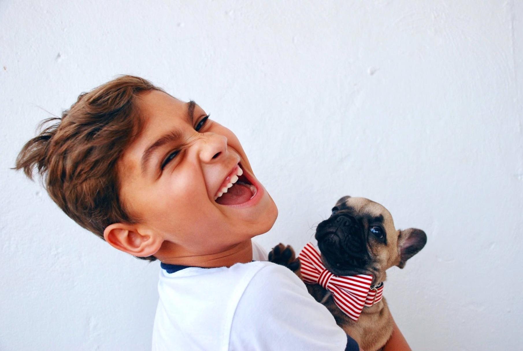 Hogyan válasszunk kutyát családunknak?