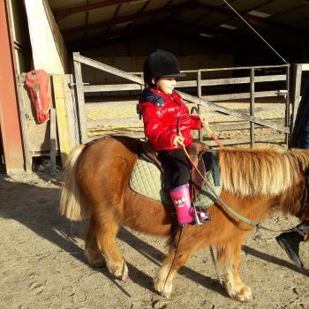 Babysitting job in Zaandam: babysitting job Lizzy
