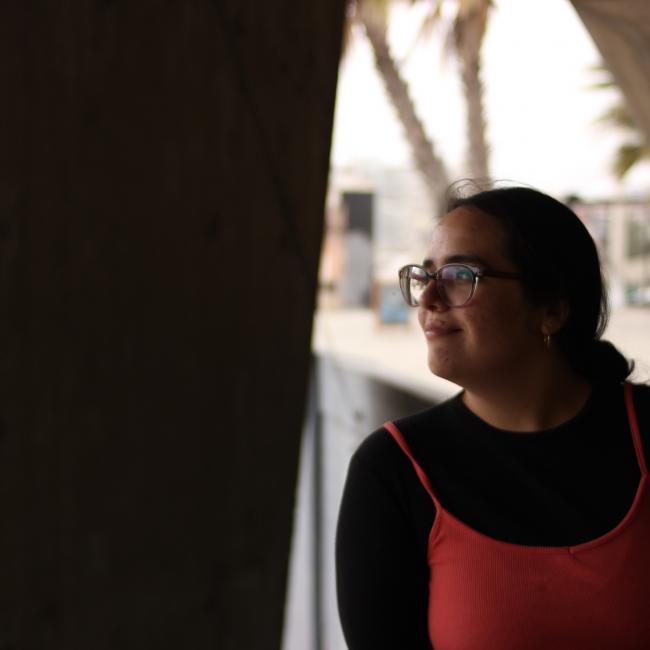 Babysitter in Quilpué: Lisa