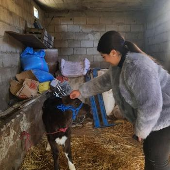 Baby-sitter Toulouse: Maëva