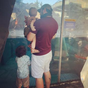 Babysitting job in Aurora: babysitting job Edward