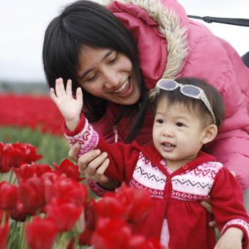 Babysitter Hermit Park: Alissara