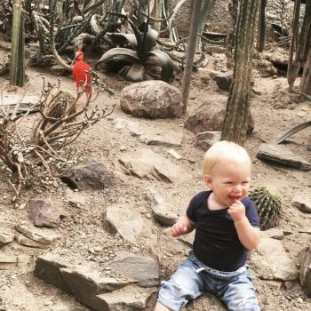 Babysitten Kasterlee: babysitadres Shelsey