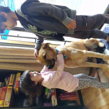 Babysitting job in Buin: babysitting job Elena