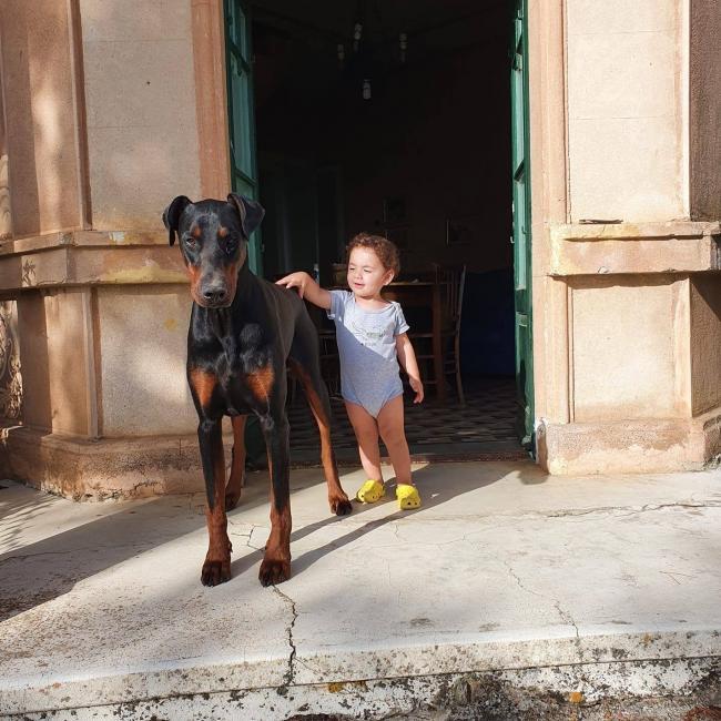 Babysitting job in Modena: Alessandra