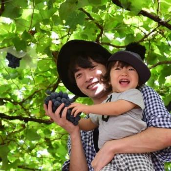 Babysitting job Saku: babysitting job 南