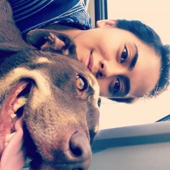 Babysitter in Tauranga: Jasmine