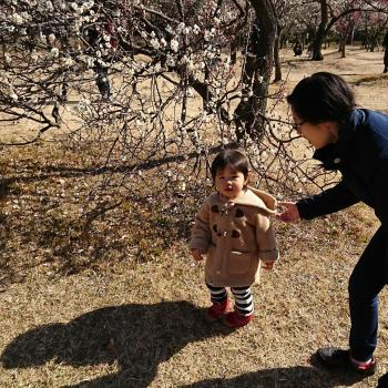 Childminder Bray: Taruhi