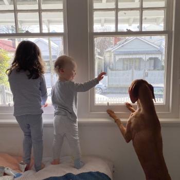 Babysitting job in Sunshine Beach: babysitting job Kate