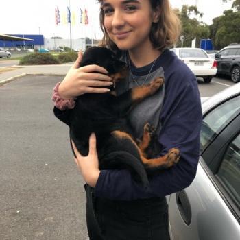 Babysitter in Adelaide: Marina