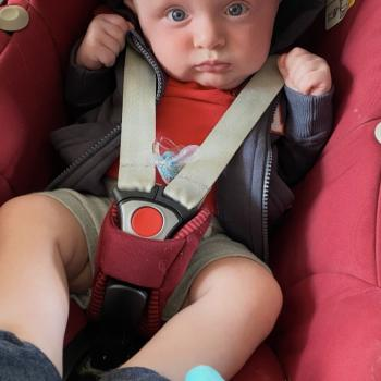 Babysitting job in Boechout: babysitting job Chloe