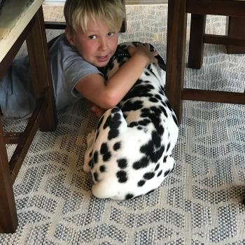 Parent Cambridge: babysitting job Jackie