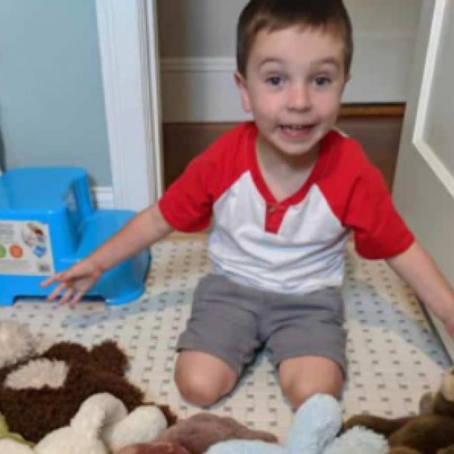 Babysitting job in Meraux: Ashton