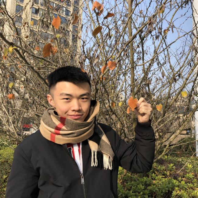 Babysitting job in Hobart: Zhen