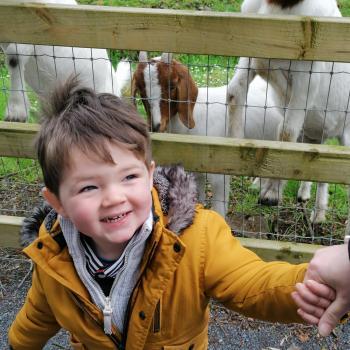 Babysitting job in Galway: babysitting job Ronan