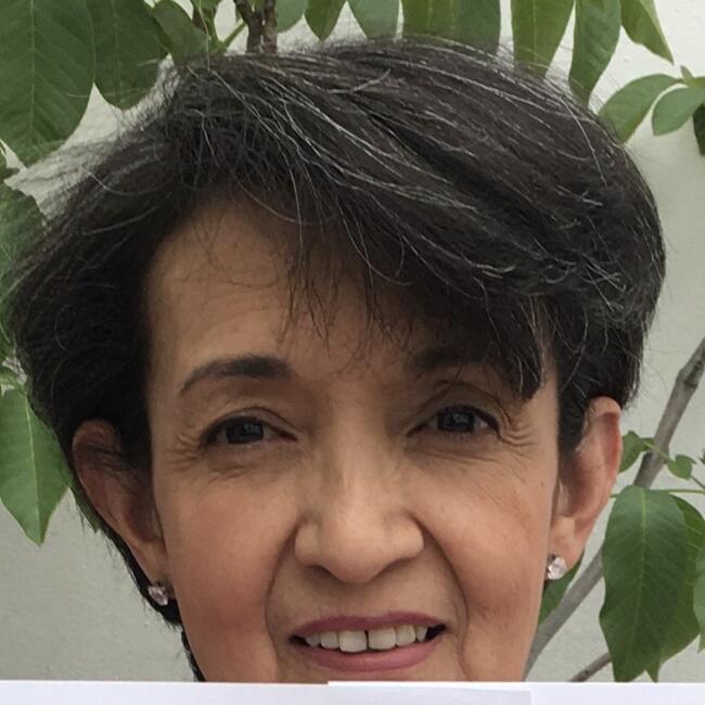 Niñera en Santiago de Querétaro: Olga