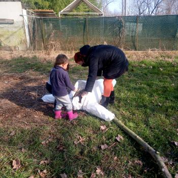Babysitting job in Castelnovo di Sotto: babysitting job Flavia