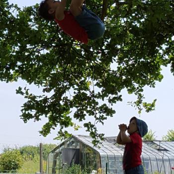 Baby-sitting Bruxelles (Koekelberg): job de garde d'enfants Joke Vanderhaeghe