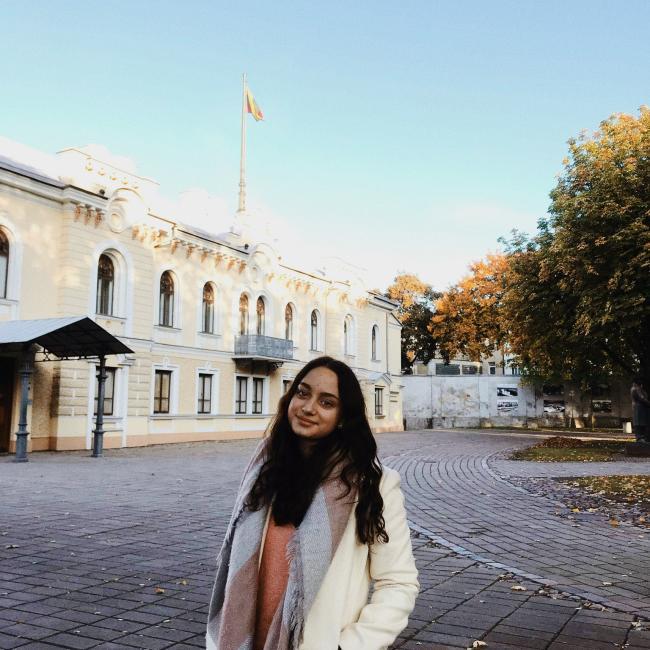 Auklė Vilnius: Kamilė