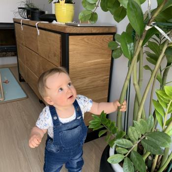 Babysitting job Grudziądz: babysitting job Patrycja