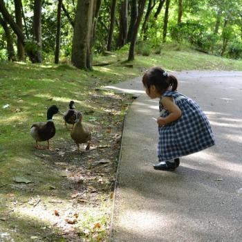 Babysitting job in Vila Nova de Gaia: babysitting job Tatiana