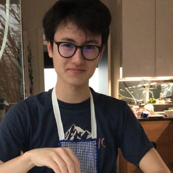 Baby-sitter Lyon: Romain