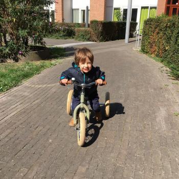 Oppaswerk Maastricht: oppasadres Ferenc