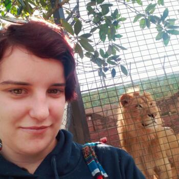 Babysitter in Port Macquarie: Bayley