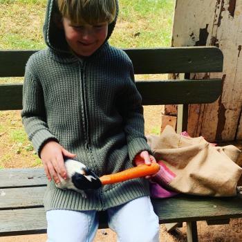 Babysitting job in Goulburn: babysitting job Josephine