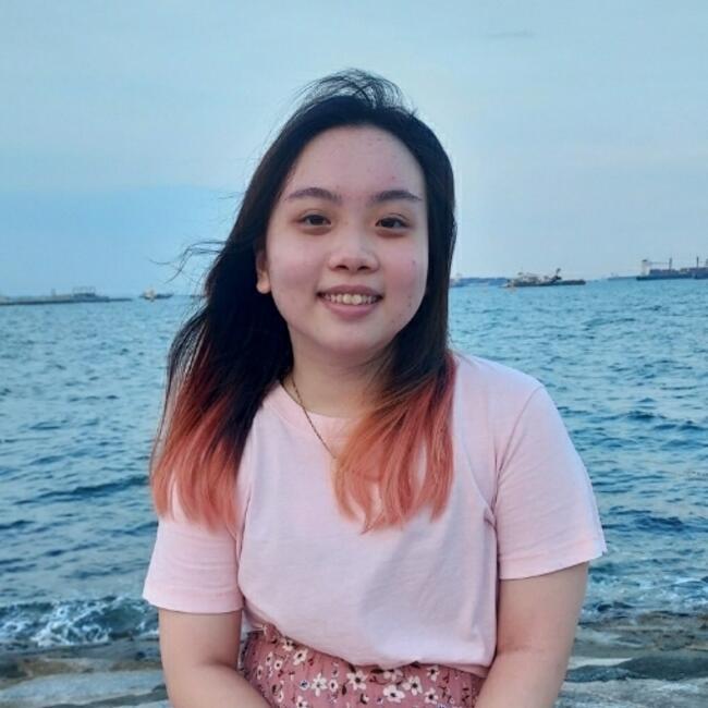 Babysitter in Singapore: Le Er