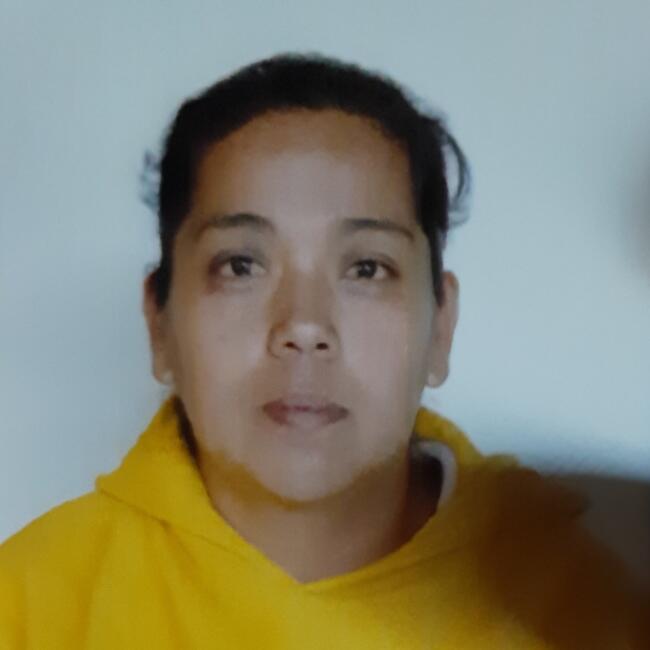 Babysitter in Tlalnepantla: Nidia basulto
