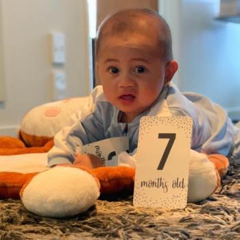 Babysitting job in Wellington: babysitting job Milo