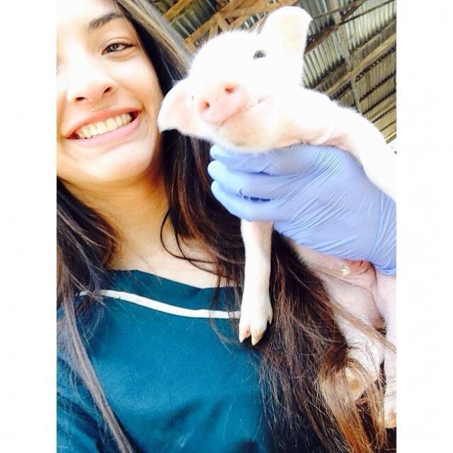 Babysitter in Romeoville: Gloriana