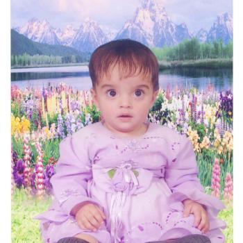Babysitter in Sligo: Alishba