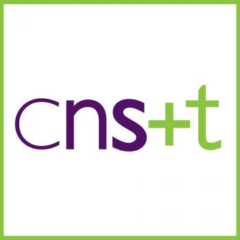 Childcare agency in Indianapolis: CNST Nannies Sitters