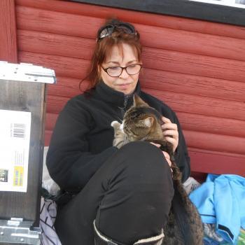 Babysitter i Søborg (Gladsaxe Kommune): Leila